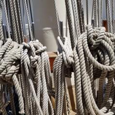 A few ropes on Tenacious
