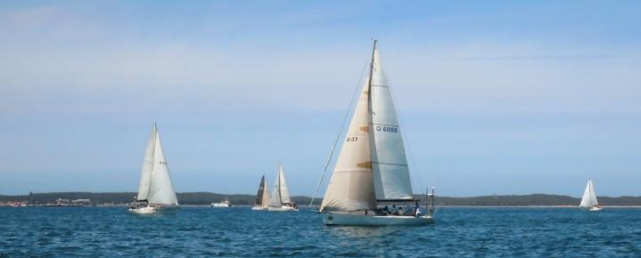 Fleet QCl Cup2020